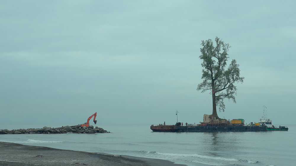 A transplanted tree from the Georgian coastline arrives at the private garden. Image courtesy of Mira Film, CORSO Film and Sakdoc Film.
